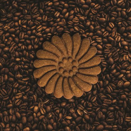 بیسکویت کاکائویی نی سا - 500 گرم