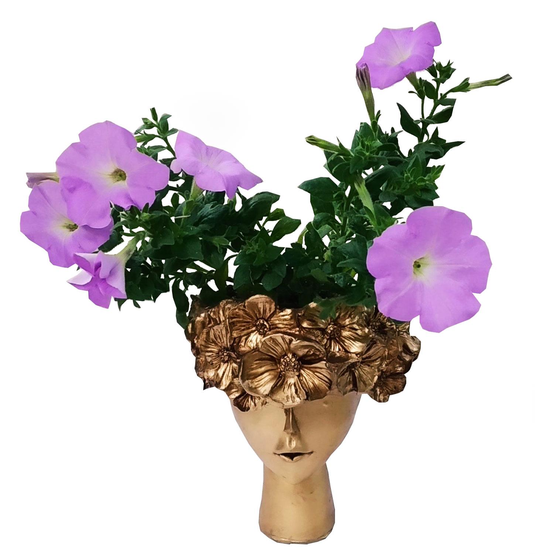 گیاه طبیعی گل اطلسی مدل C-12