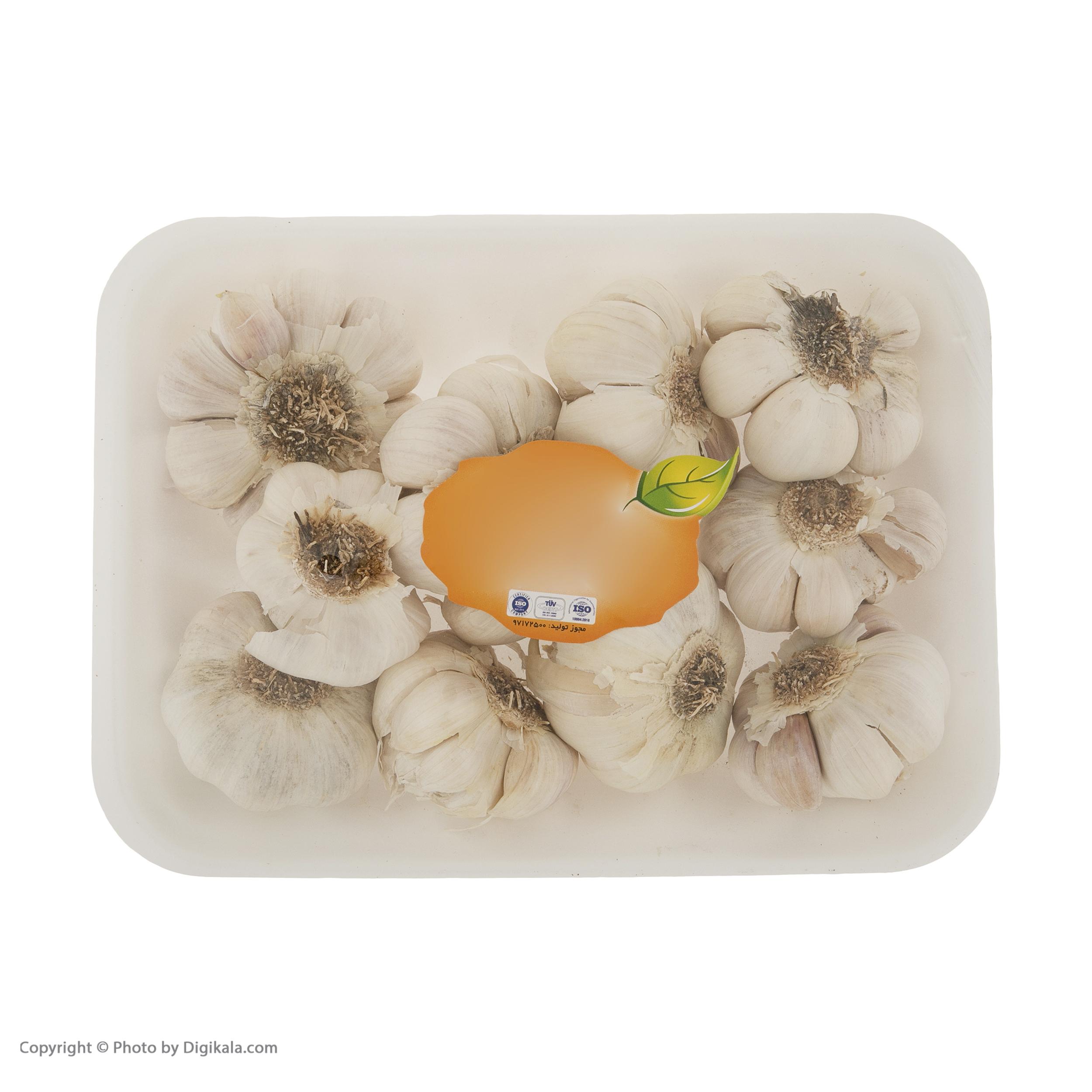 سیر میوکات - 500 گرم main 1 1