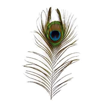 پر دریم کچر طرح طاووس کد P30