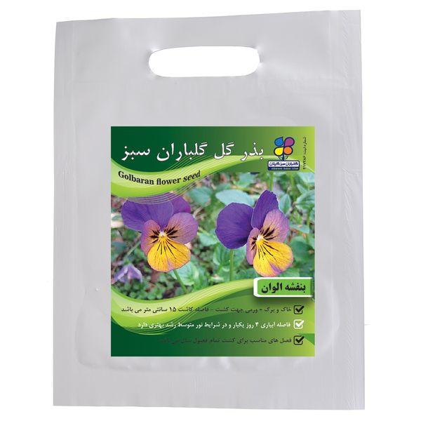بذر گل بنفشه الوان گلباران سبز