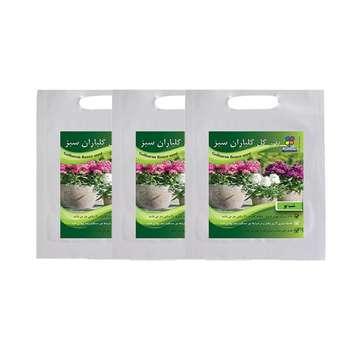 مجموعه بذر گل شب بو گلباران سبز بسته 3 عددی