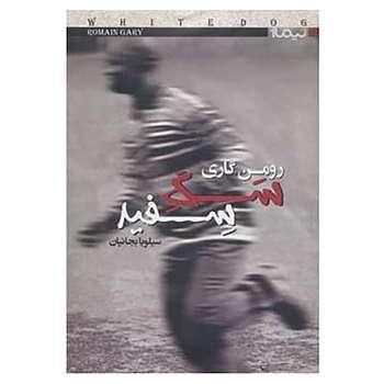 کتاب کتاب دیگران22 اثر رومن گاری