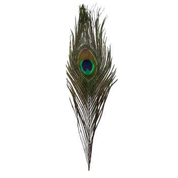 پر دریم کچر طرح طاووس کد  b4