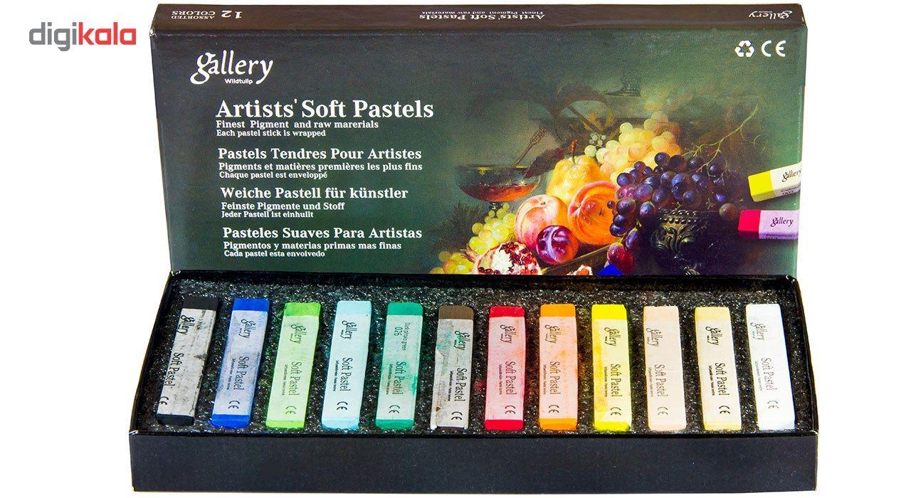 پاستل گچی 12 رنگ وایلد تولیپ مدل Gallery main 1 1