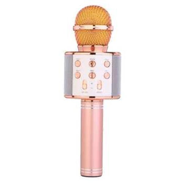 میکروفون اسپیکر مدل WS-858