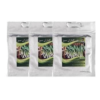 مجموعه بذر پیازچه سفید گلباران سبز بسته 3 عددی