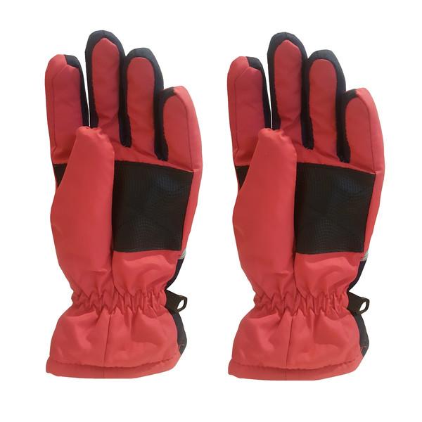 دستکش اسکی آلیوی مدل D_85551