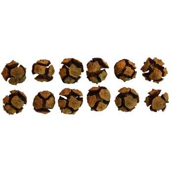 میوه تزیینی طرح کاج مدل C1 بسته 12 عددی