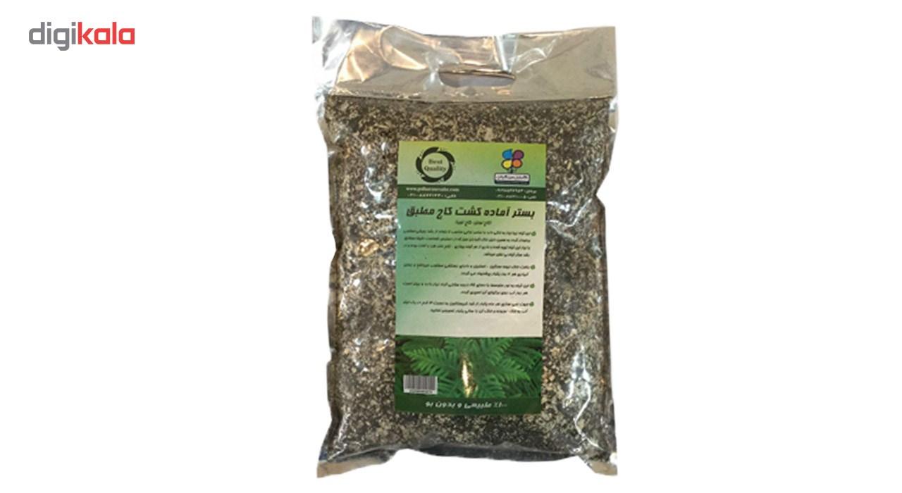 بستر آماده کشت گیاه کاج مطبق 2 کیلوگرمی گلباران سبز بسته 3 عددی در بزرگترین فروشگاه اینترنتی جنوب کشور ویزمارکت