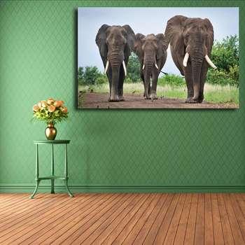 تابلو شاسی مدل فیل کد 024