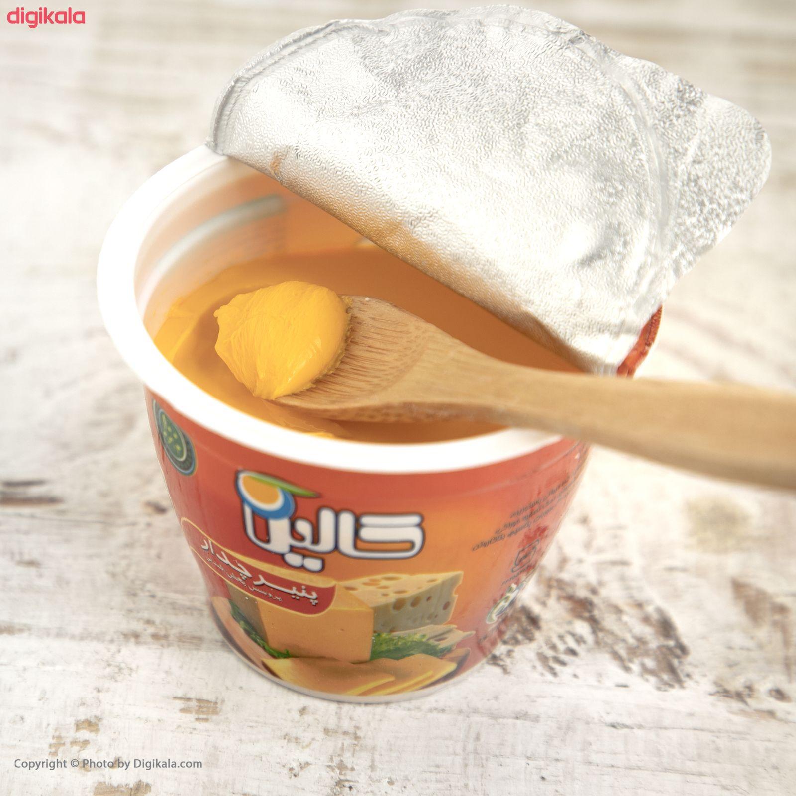پنیر دیپ چدار کالین مقدار 100 گرم main 1 8