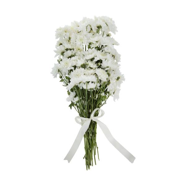 گل داوودی مینیاتوری سفید  دسته 6 عددی