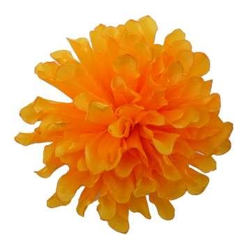 گیره مو زنانه مدل گل کوکب کد 6