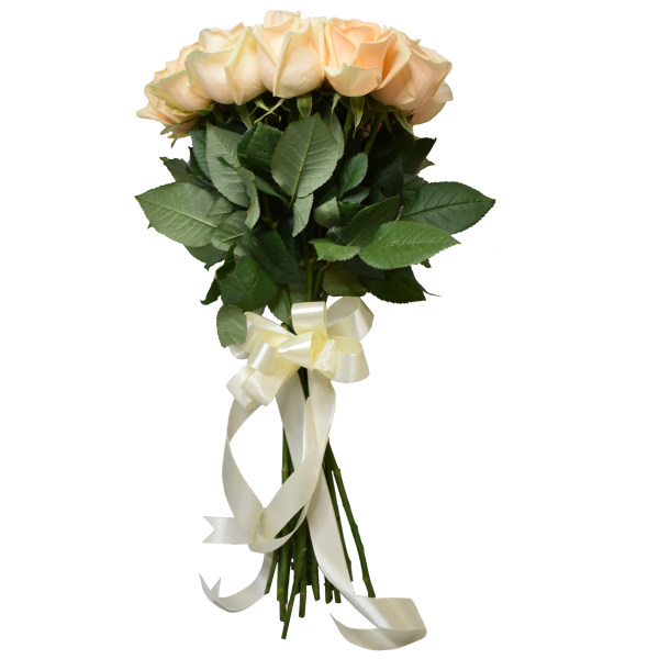 شاخه گل رز هلندی گل بهی دسته 20 عددی