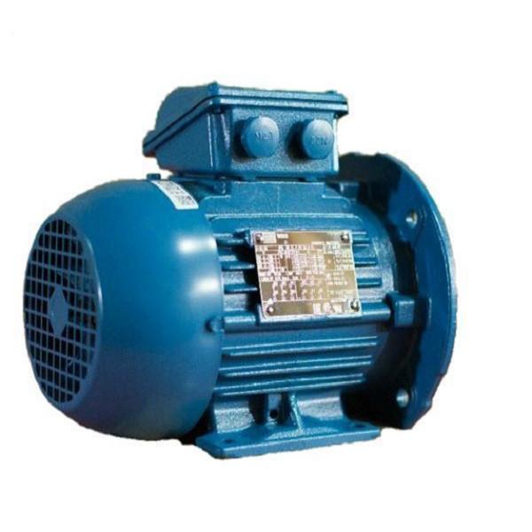 الکتروموتور صنعتی وگ کد01