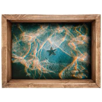 استیکرسه بعدی سالسو طرح ستاره دریایی