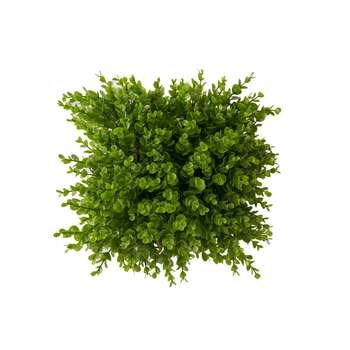 چمن مصنوعی مدل دیوار سبز نقش برجسته شمشادی 25×25 سانتی متر