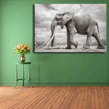 تابلو شاسی مدل فیل کد 07
