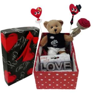 ست هدیه عروسک طرح خرس مدل Ndvs51