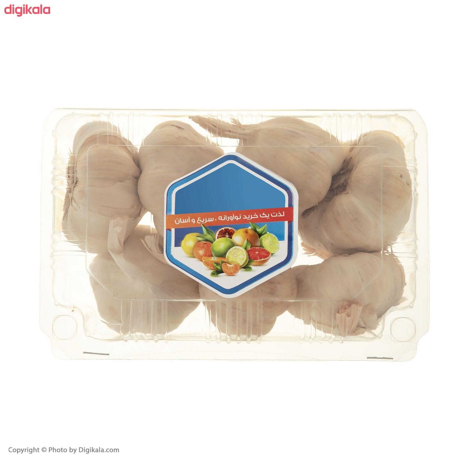سیر خشک میوه پلاس - 500 گرم main 1 2
