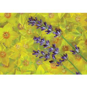 تابلو شاسی آکو طرح Flower سایز 40 × 28 سانتی متر