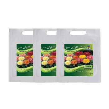 مجموعه بذر گل داوودی گلباران سبز بسته 3 عددی
