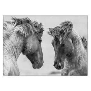 تابلوی ونسونی طرح Gray Horses سایز 50x70