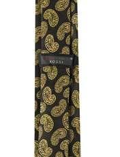 ست کراوات و دستمال جیب و گل کت مردانه جیان فرانکو روسی مدل GF-PA925-GO -  - 5