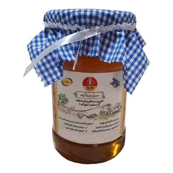 عسل چند گیاه سلوا- 800 گرم