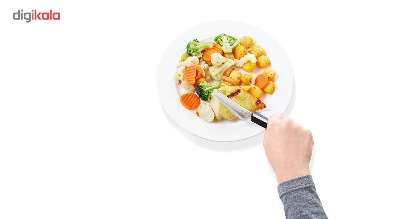 کارد غذاخوری ویتیلیتی مدل Ergonomic