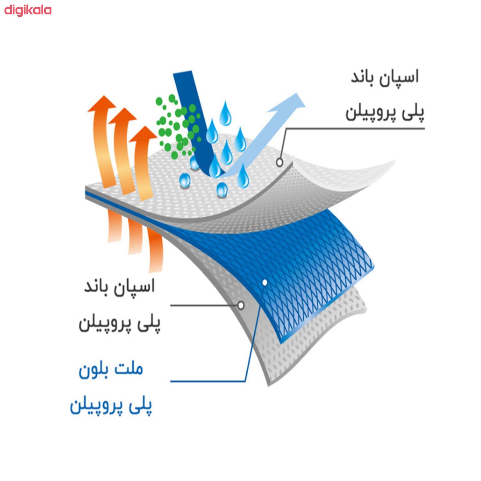 ماسک تنفسی ناردین مدل sms بسته 50 عددی main 1 5