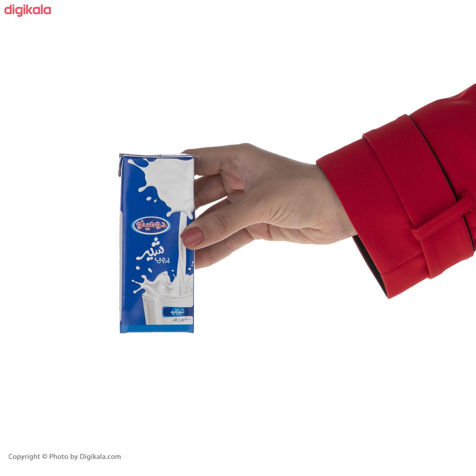 شیر پر چرب دومینو - 0.2 لیتر  بسته 6 عددی main 1 7