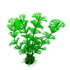 گیاه تزیینی آکواریوم کد 708