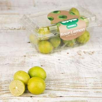 لیمو ترش هودکا - 500 گرم
