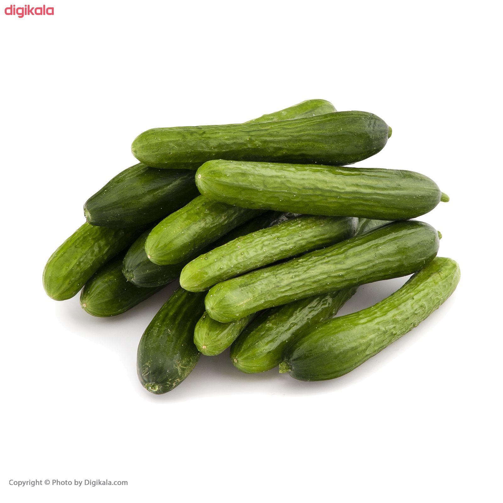 خیار میوکات - 1 کیلوگرم main 1 4
