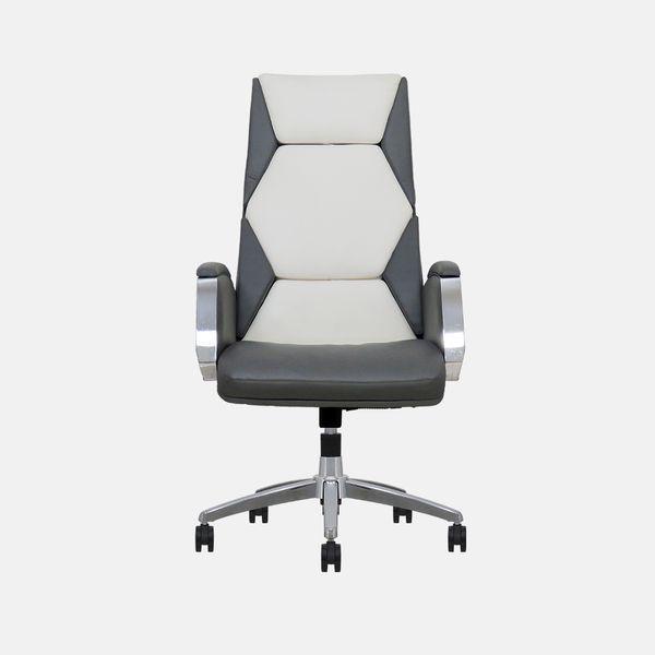 صندلی مدیریتی مدل دنتیست سری M1010