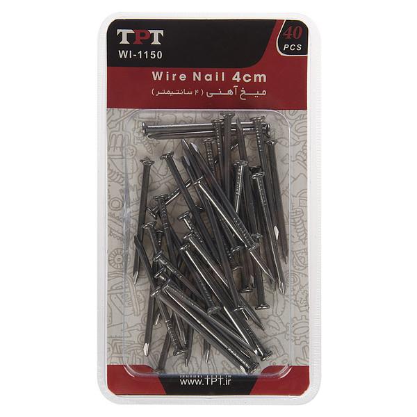 مجموعه 40 عددی میخ آهنی تی پی تی مدل WI-1150