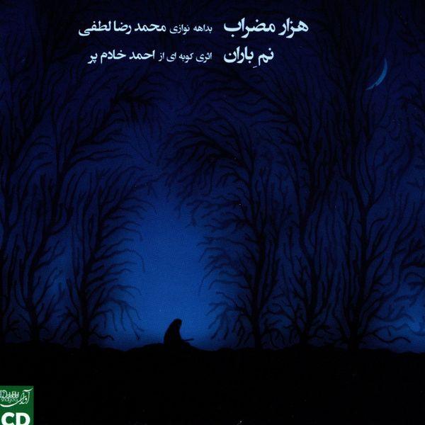 آلبوم موسیقی کنسرت هزار مضراب اثر محمدرضا لطفی