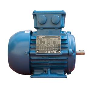 الکتروموتور صنعتی وگ مدل W22