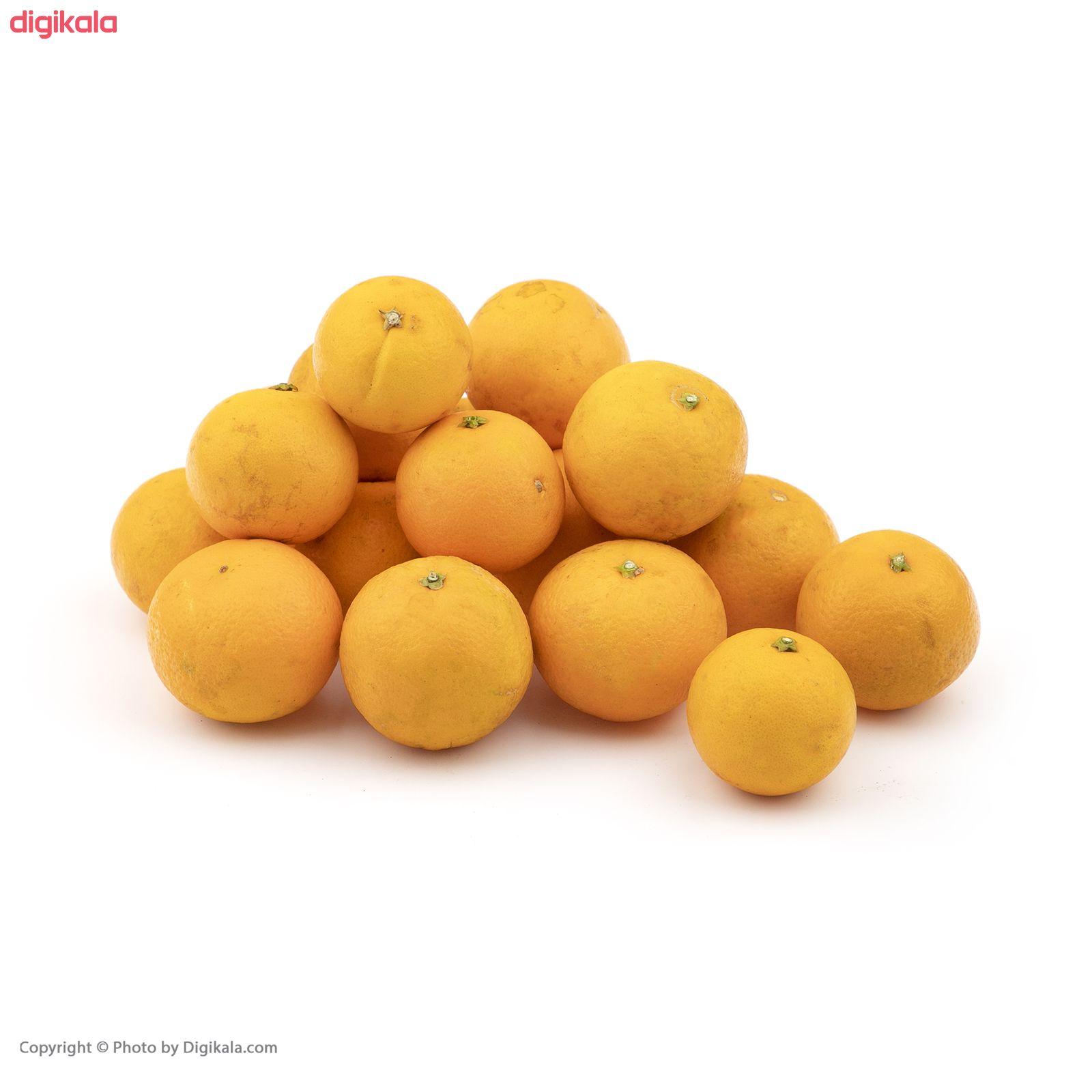 پرتقال آبگیری فله - 2.5 کیلوگرم main 1 1
