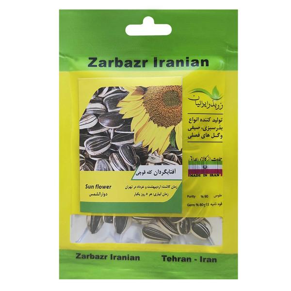 بذر آفتابگردان کله قوچی زر بذر ایرانیان کد ZBP-15