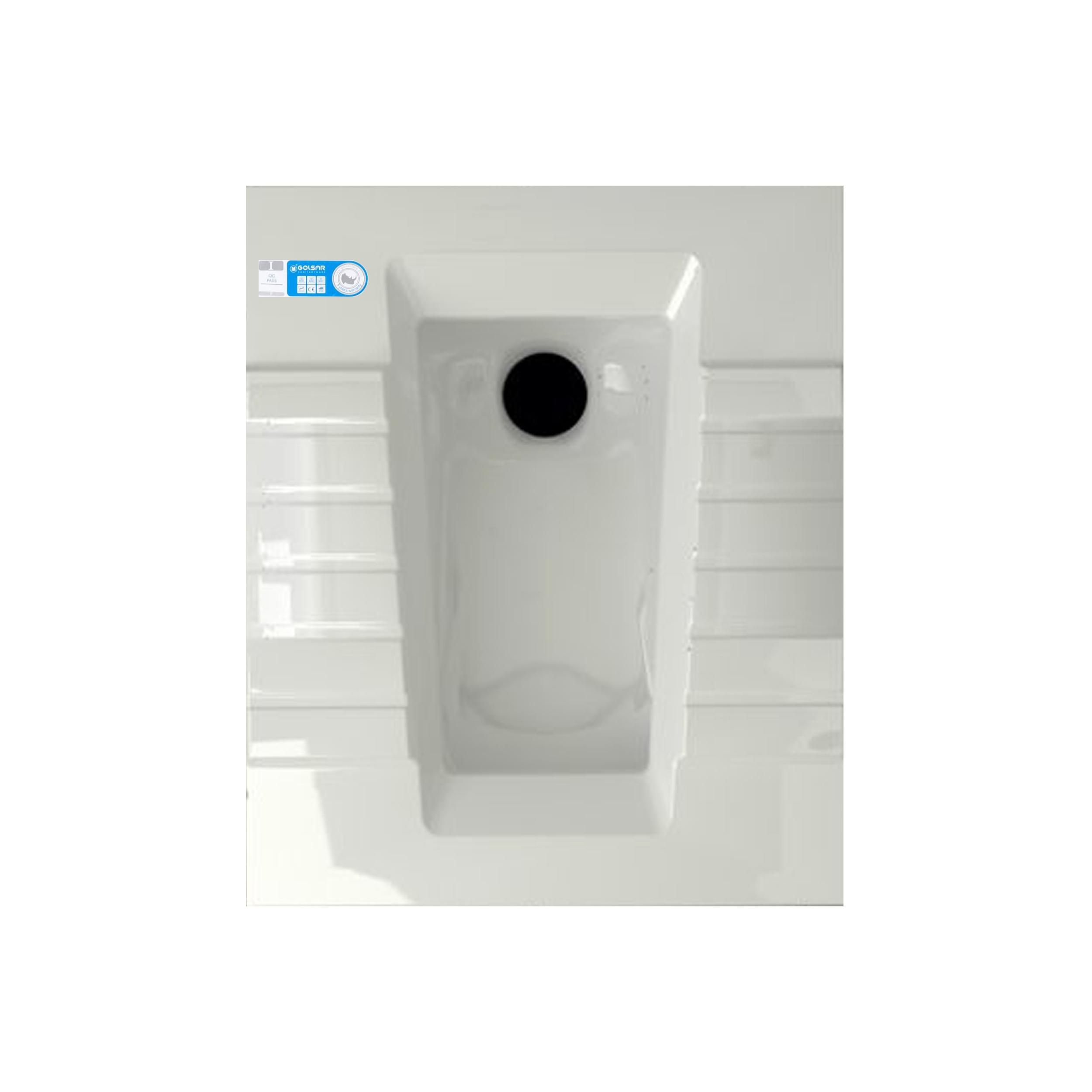 توالت زمینی گلسار مدل aster