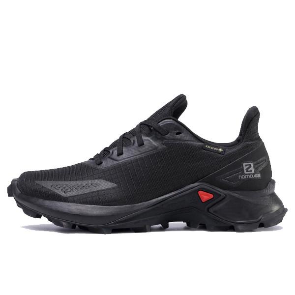 کفش مخصوص دویدن مردانه سالومون مدل Alphacross Blast Gtx GORE-TEX