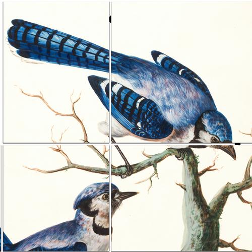 تابلو شاسی 10 تکه طرح نقاشی پرنده کد 136