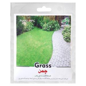 بذر چمن گرین فارم کد A 30