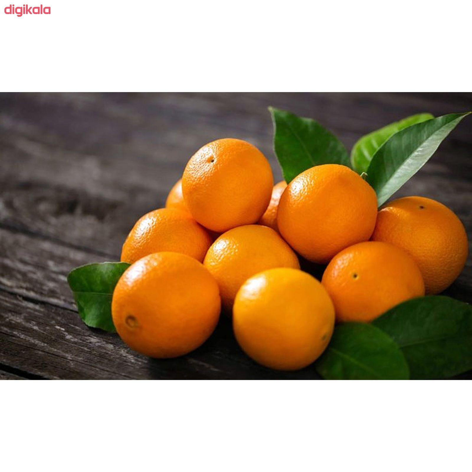 پرتقال رسمی شمال آبگیری بلوط - 1 کیلوگرم  main 1 7