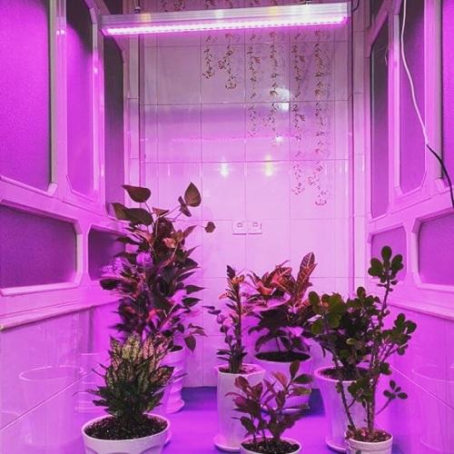 وال واشر رشد گیاه 36 وات مدل W