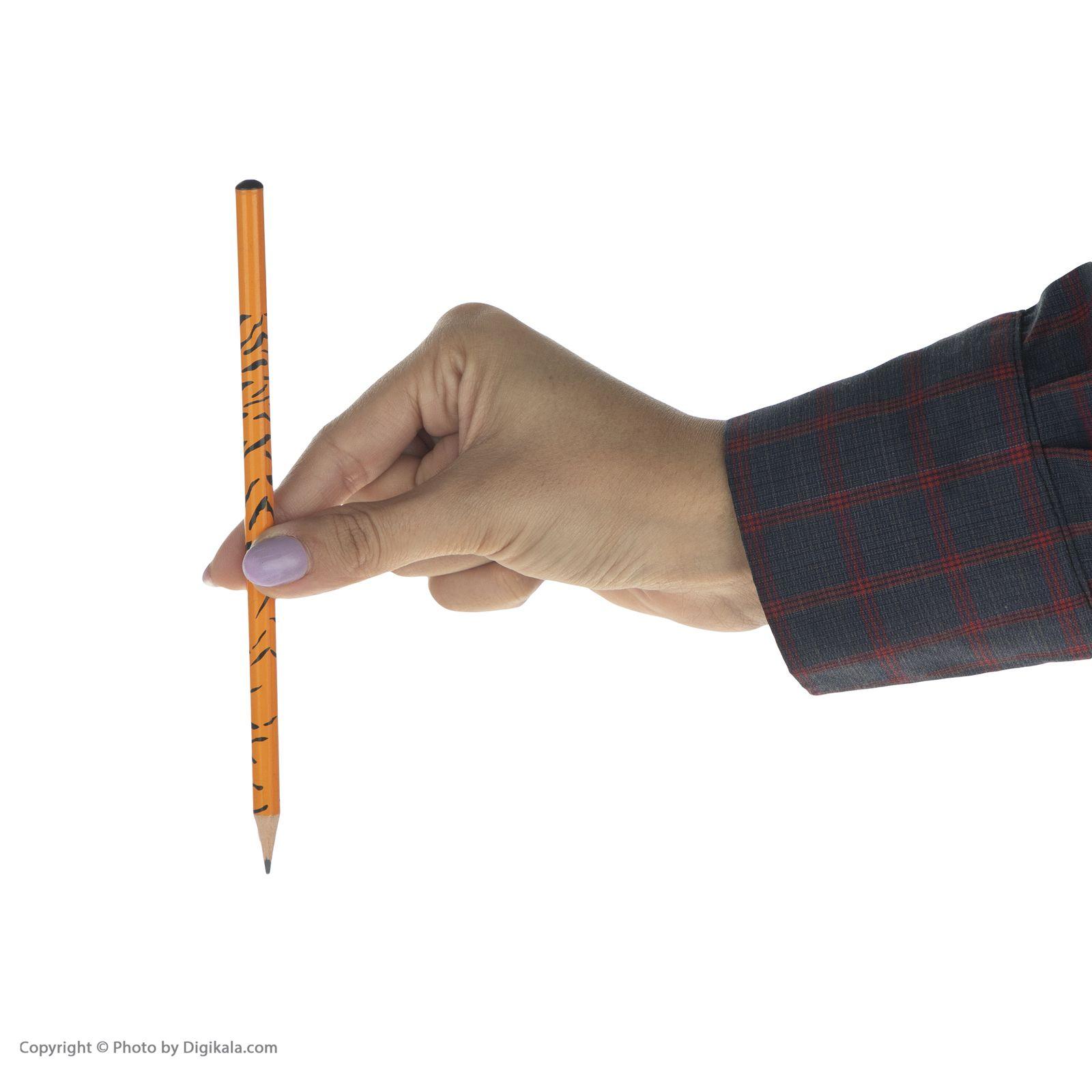 ست مداد مشکی و پاک کن فکتیس طرح ببر بسته 3 عددی main 1 6