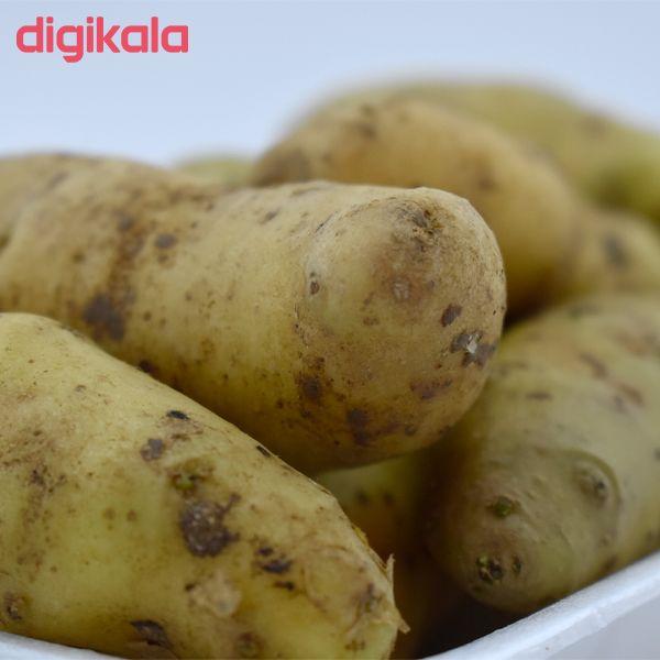 سیب زمینی استانبولی درجه یک - 1000 گرم main 1 2
